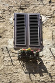 Low angle view of a window box — Foto de Stock