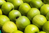 Close-up of granny smith apples — Stock Photo