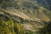 High angle view of small village with terraced field, Uttarkashi — Stock Photo