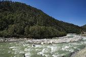 Bhagirathi řeka na gangotri, uttarkashi okres, uttarakhand, — Stock fotografie