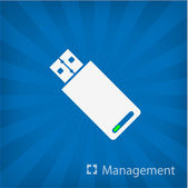 Illustration of Usb Stick icon — Stock Vector