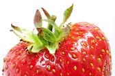 Mogen jordgubbe på vit, topp. — Stockfoto