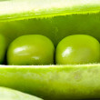 Open Fresh Pea Pod, Macro — Stock Photo