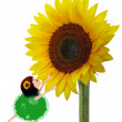 Little Girl and Sunflower — Stock Photo