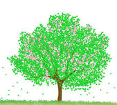 Green tree — Stock Photo
