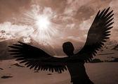 Soar like an eagle — Stock Photo