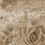 Романтический фон с розами — Стоковое фото #38938261