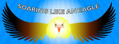 Soar like an eagle- Facebook timeline — Stock Vector