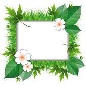 Marco de hierba y hojas — Vector de stock
