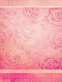 Vintage roses background — Foto Stock