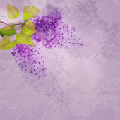 Vintage background with lilac branch — Stock Photo