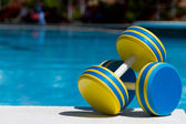 Two plastic dumbbells for water aerobics — Stock Photo