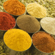 Spice powders and seeds — Stock Photo