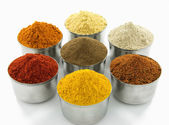 Spice collection isolated on white background — Stock Photo