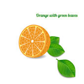 Orange fruit with green leaves on a white background — Stock Vector