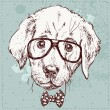 Cute fashion Hipster Animals & pets, set of vector icons — Stok Vektör