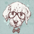 Cute fashion Hipster Animals & pets, set of vector icons — Imagen vectorial