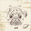 Hipster pug dog with hat — Stock Vector