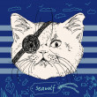 Pirate cat on blue background — Stock Vector