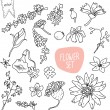 Vector doodle flower set — Stock Vector