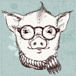 Vector illustration of hipster pig in glasses and scarf ,vintage textured background — Stock Vector