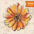 Vector illustration of flower hand drawn on vintage background, orange color, gerber — Stock Vector
