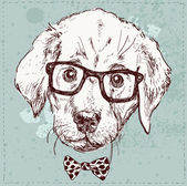 Hipster puppy with glasses — Cтоковый вектор