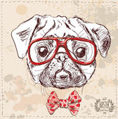 Hipster pug dog with glasses and suit — Stock Vector