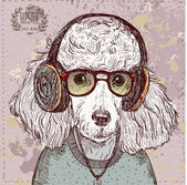 Vintage illustration of hipster poodle with glasses, headphones and bow in vector on vintage background — Stock Vector