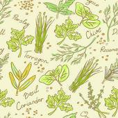 无缝模式草药集,矢量手绘插画 — 图库矢量图片