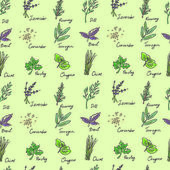 Seamless Pattern Herbs set, vector hand drawn illustration — Stock Vector