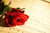 Serenada — Zdjęcie stockowe