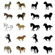 Dogs and horses — Stock Vector