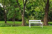 древесина скамейка в зеленом парке — Стоковое фото