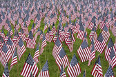 Numerous commemorative US flags — Stock Photo