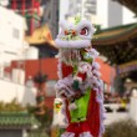 Chinese lion dance — Stock Photo #36797821