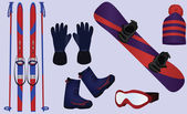 Winter sport accessories — ストックベクタ