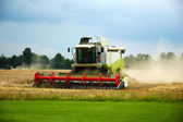 Combine harvester. — Stock Photo