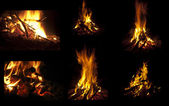 Camp fire collection. — Stock Photo