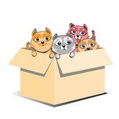 Adoção de gatinhos abandonados na caixa — Foto Stock