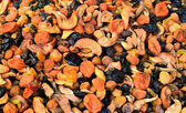 Various dried fruit for compote   — Stockfoto