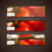 Banners with tomatoes — Stock Vector