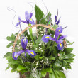 Floral arrangement — Stock Photo #32347345