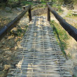 Stock Photo: Bamboo bridge in forest