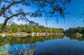 Mixed forest and bungalow reflected in the lake and blue sky — Stock Photo
