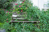 Old Wooden Bench in the garden for vintage decorate — Stock Photo