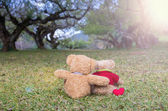 Two TEDDY BEAR brown color sitting on grass under the tree with  — Stock Photo