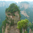 Zhangjiajie National Park, Avatar mountains, China — Stock Photo