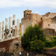 Ruins of the Roman Forum, Rome, Italy — Stock Photo