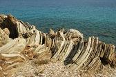 Weathered limestone on the Mediterranean coast — Stock Photo